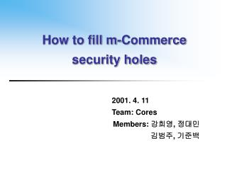 How to fill m-Commerce security holes