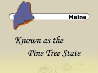 Known as the Pine Tree State
