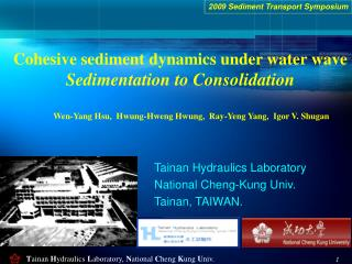 Cohesive sediment dynamics under water wave Sedimentation to Consolidation