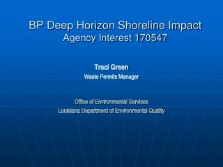 BP Deep Horizon Shoreline Impact Agency Interest 170547