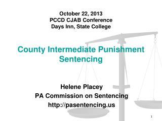 County Intermediate Punishment Sentencing