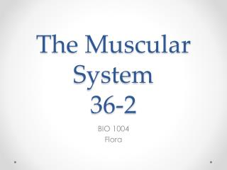 The Muscular System 36-2