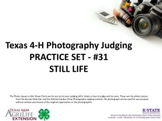 Texas 4-H Photography Judging PRACTICE SET - #31 STILL LIFE