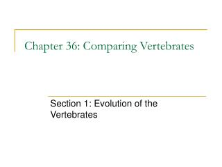 Chapter 36: Comparing Vertebrates