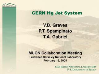 CERN Hg Jet System