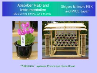 Absorber R&D and  Instrumentation