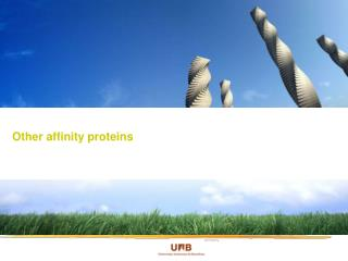 Other affinity proteins