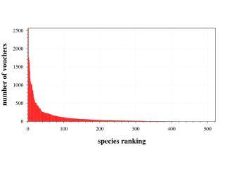 Taxonomic Analysis