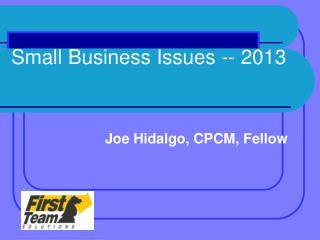 Small Business  Issues -- 2013