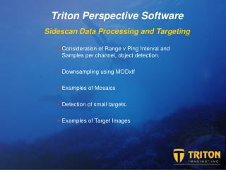 Triton  Perspective Software Sidescan Data Processing and Targeting