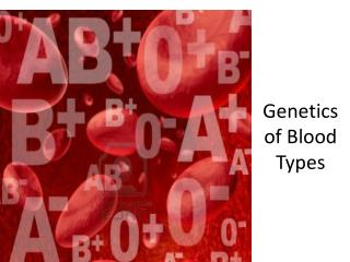 Genetics of Blood Types