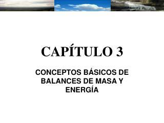 CAP�TULO 3
