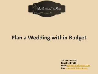 Plan  a  Wedding  within Budget