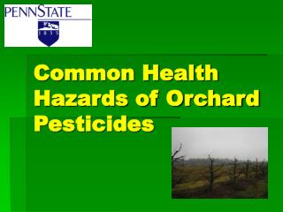 Common Health Hazards of Orchard Pesticides