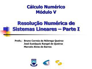 Cálculo Numérico Módulo V