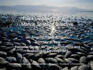 The European Union's  Marine Strategy Directive