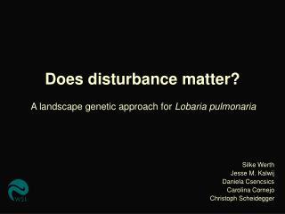 Does disturbance matter?
