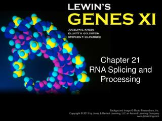 Chapter 21 RNA Splicing and Processing
