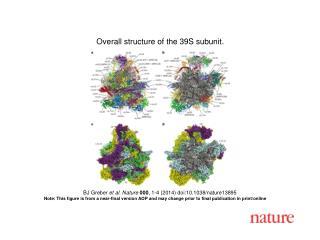 BJ Greber  et al. Nature  000 , 1-4 (2014) doi:10.1038/nature13895
