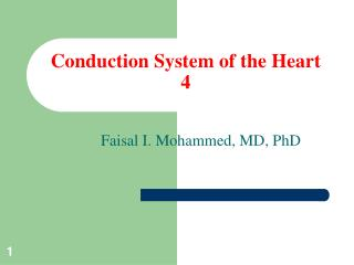 Conduction System of the Heart 4