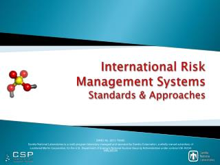 International Risk Management Systems  Standards & Approaches