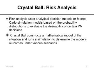 Crystal Ball: Risk Analysis