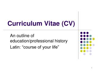 Curriculum Vitae (CV)