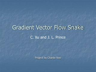 Gradient Vector Flow Snake