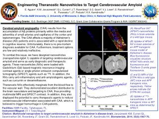 Engineering  Theranostic Nanovehicles  to  Target Cerebrovascular Amyloid