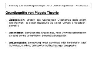 Grundbegriffe von Piagets Theorie