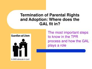 Termination of Parental Rights and Adoption: Where does the GAL fit in?