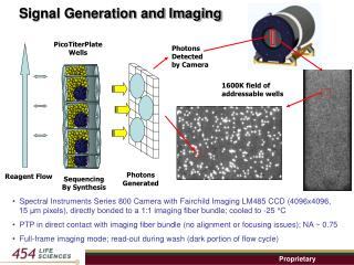 Signal Generation and Imaging
