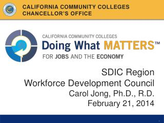 SDIC Region Workforce Development Council Carol Jong, Ph.D., R.D . February 21, 2014