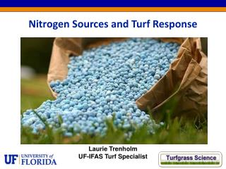 Nitrogen Sources and Turf Response
