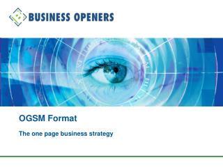 OGSM Format