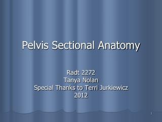 Pelvis Sectional Anatomy