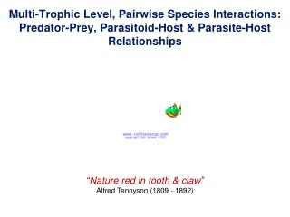 """""""Nature red in tooth & claw"""" Alfred Tennyson (1809 - 1892)"""