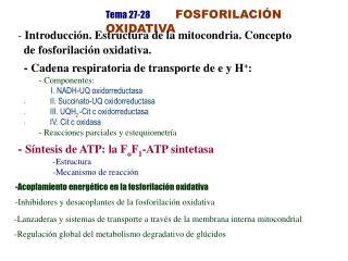 Tema 27-28 FOSFORILACIÓN OXIDATIVA