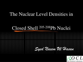The Nuclear Level Densities in Closed Shell  205-208 Pb Nuclei
