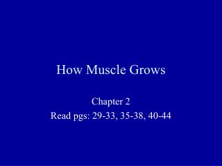 How Muscle Grows