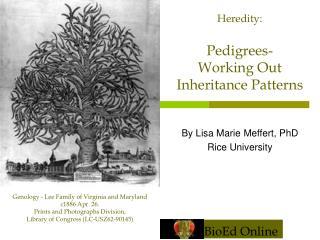 By Lisa Marie Meffert, PhD Rice University