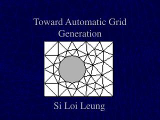 Toward Automatic Grid Generation