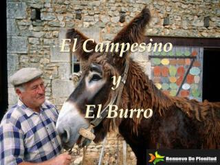 El Campesino y   El Burro