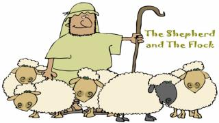 The Flock's Responsibility to The Shepherd