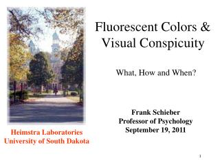 Fluorescent Colors & Visual Conspicuity