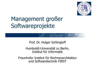 Management gro�er Softwareprojekte