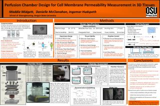 Perfusion Chamber Design for Cell Membrane Permeability Measurement in 3D Tissues