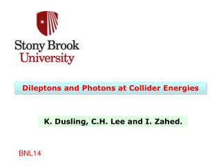 Dileptons  and Photons at Collider Energies