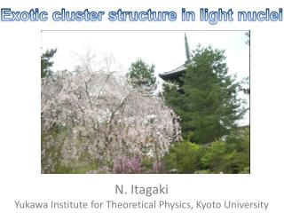 N. Itagaki  Yukawa Institute for Theoretical Physics, Kyoto University