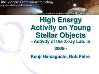 High Energy Activity on Young Stellar Objects - Activity of the X-ray Lab. in 2005 -